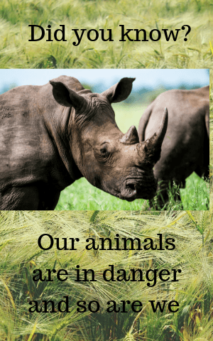 Did You Know Our Animals Are In Danger And So Are We Fundza